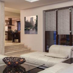 www_delfa-78206-mini_interior