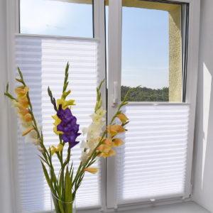 www_delfa_plisse_samoa_331_beli_okno