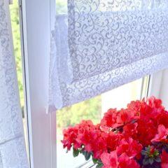 www_delfa_rim_retro_mini_okno